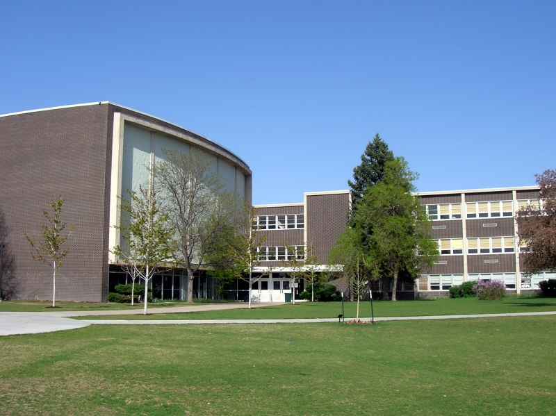 denver university school window film contractor