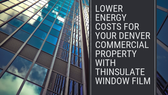 thinsulate window film denver